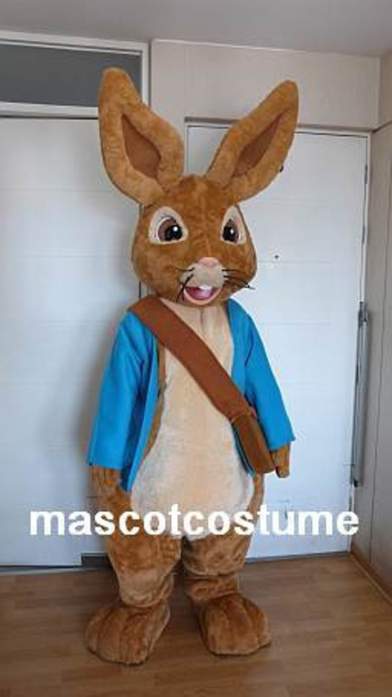9e0aa31365c2d New Special peter rabbit mascot Costume character
