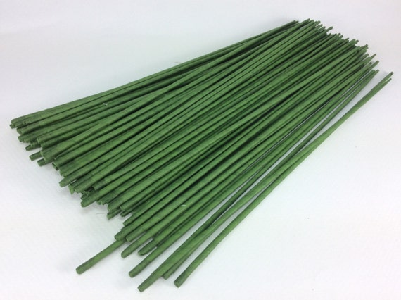 Floral Wire Flower Stem Artificial Green Wire Stems. Floral Stem Length 12 X 1.15 mm Artificial Stems 100 Wire Stems--Gauge#20--