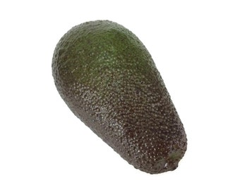 Avocado Fake Fruit Faux Vegetables Decor Children Teaching Props
