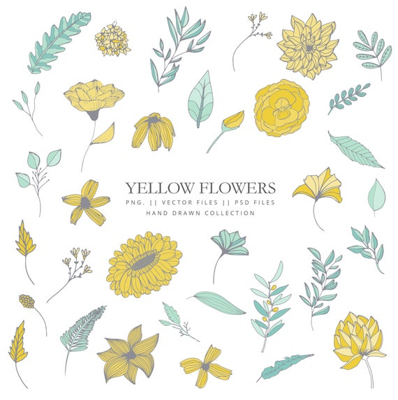 Clip Art With Different Yellow Flowers Hand Drawn Leaves And Etsy