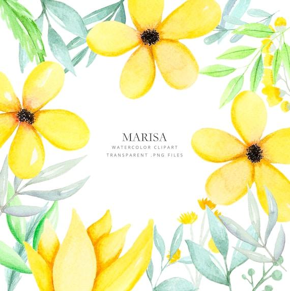 Dibujos En Acuarela De Flores Ramas Y Hojas Dibujado A