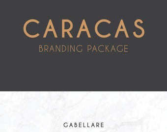 I will create a professional company logo design