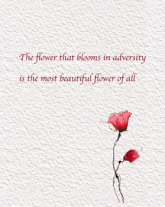 inspirational friendship quote the flower that blooms in