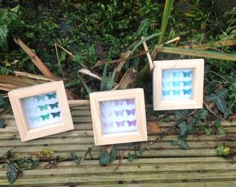 OOAK butterfly shadow box