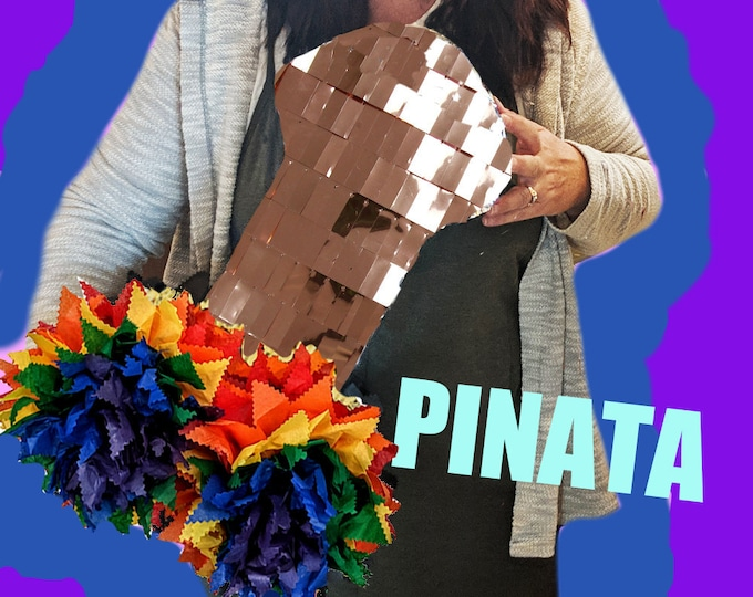 Rainbow Pinata, PRIDE Penis Piñata, Penis LGBTG Bachelor, DickCustom Pecker Piñata, Bachelor Party, Bachelorette Party Games, Bachelor Party