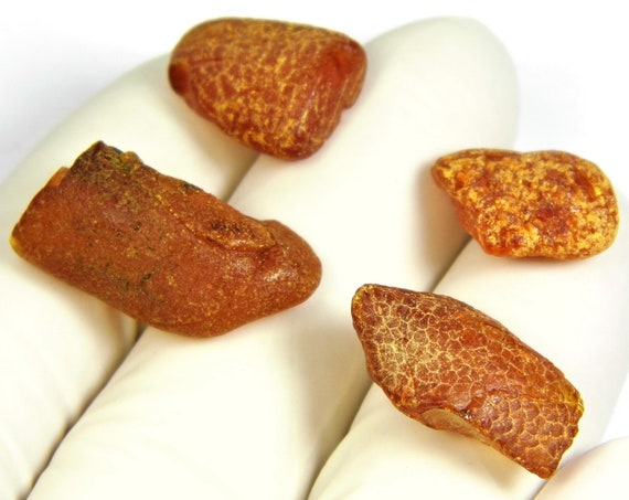 Lot of 4 raw unpolished rough Baltic Amber stones 3.4 grams natural genuine real authentic FREE SHIPPING 2940