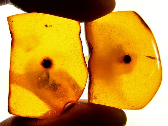 Natural Baltic Amber old vintage antique cognac / honey / transparent color cuff-links authentic genuine men's jewelry FREE SHIPPING 2002