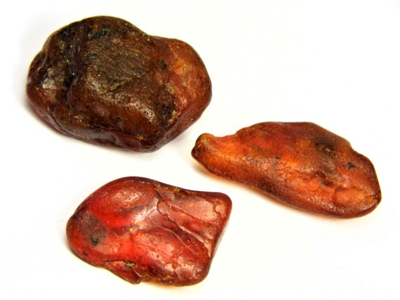 Lot of 3 natural genuine Baltic Amber raw unpolished rough stone 9.8 grams real authentic gemstone unique rare 3597