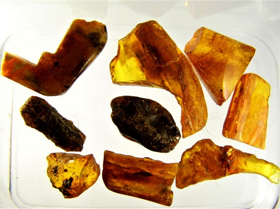 Natural Baltic Amber stones 20 grams genuine old vintage retro antique authentic beads lot FREE SHIPPING 2404