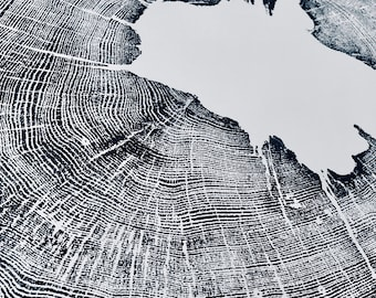 Iowa Oak Tree Ring Print. Original Woodblock print made from an Oak tree. Printed by hand on 24x36 inch paper. Signed
