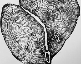 Waco Texas Cedar, Tree ring print from cedar, Original Woodblock printed by hand from Real cedar. Signed by Erik Linton