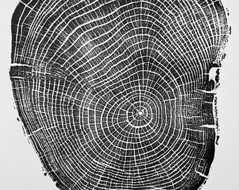 Connecticut Ash, Yale Campus, Tree ring print from Ash, Original Woodblock printed by hand from a Real Ash tree. Signed by Erik Linton