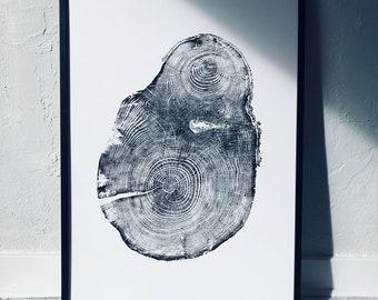 Seattle Washington Hemlock Tree Ring Print. Original Woodblock print made from a Hemlock tree. Printed on 24x36 inch paper. Signed