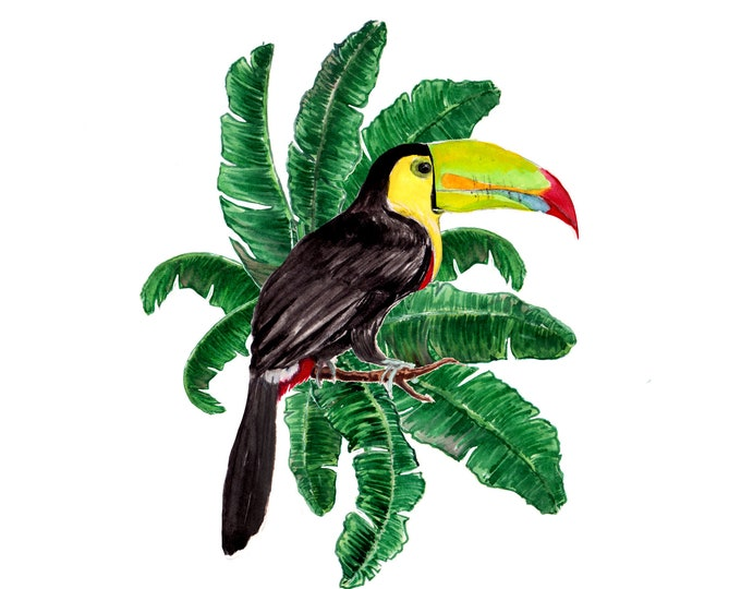 Toucan in Paradise