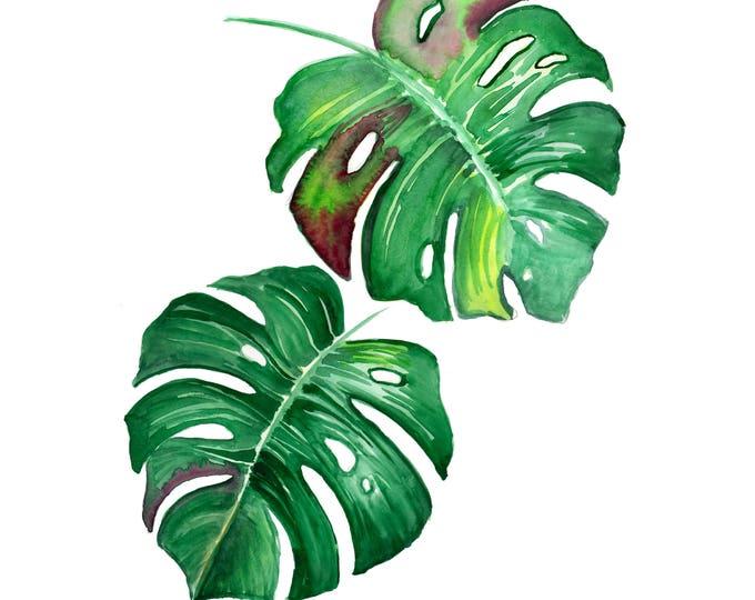 Split Leaf I