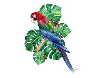 Bird in Paradise
