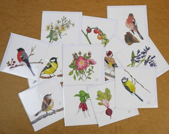 British bird cards vegetables flowers insect by roseofstitching lucky dip greetings cards surprise mixed bundle of 4 greetings cards by rose of stitching greetings cards lucky dip stationery bundle m4hsunfo