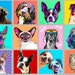 Maritza Lynn reviewed Custom Pet Portrait, Custom Border Collie Pop Art, Gift for Dog Lover, Funny Dog Art, Cat Portrait, Gift for Her, Gift for Him, Pet Memorial