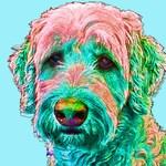 Labradoodle Art, Golden Doodle Custom Art, Pop Art Portrait of Dog, Gift for Dog Lover, Pet Memorial, Custom Pet Portrait