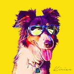 POP Art Pet Portrait, Custom Border Collie Art, Personalized Pet Portrait, Digital Pet Portrait, Gift for Dog Lover, Funny Dogs