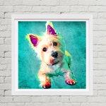 Pet Portrait, Custom Dog Pop Art, Custom Pet Portrait from Photo, Westie Art, Gift for Dog Lover