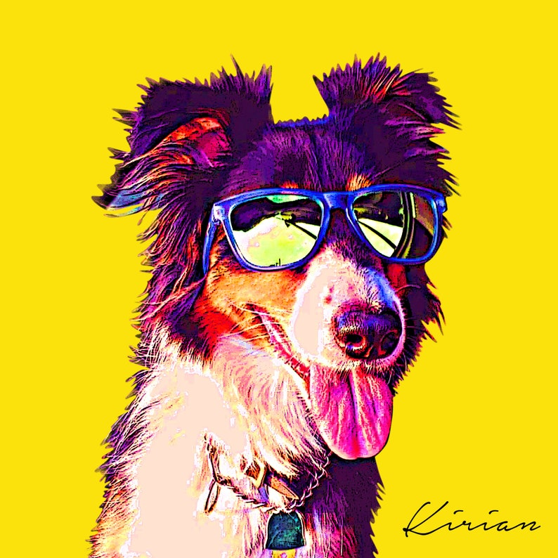 POP Art Pet Portrait Custom Border Collie Art Personalized image 0