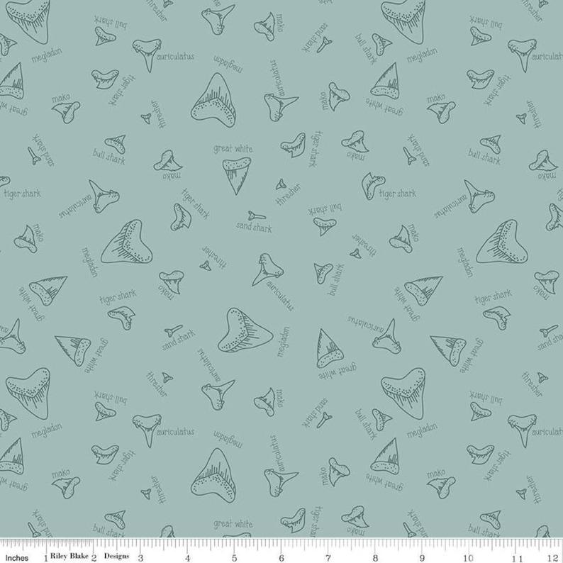 Sea Ocean Sharks Teeth Names Green SALE Riptide Fossils C10301 Seafoam Riley Blake Designs Quilting Cotton Fabric