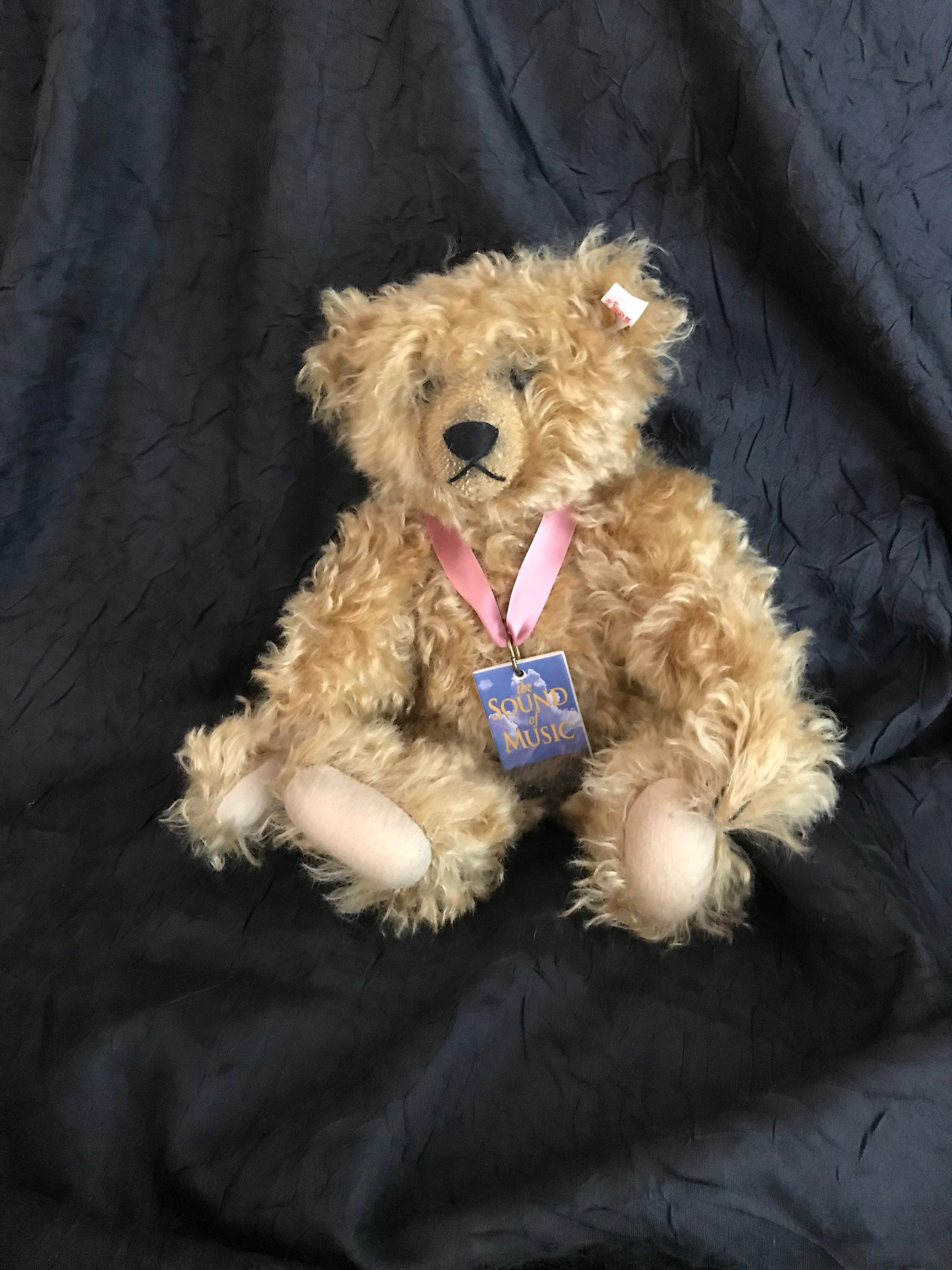 Steiff limited edition sound of music bear with music box.