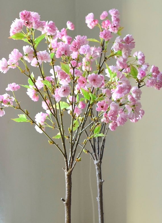 Nordic Sakura Pink Japanese Cherry Blossoms 2 Trees In Rustic Etsy