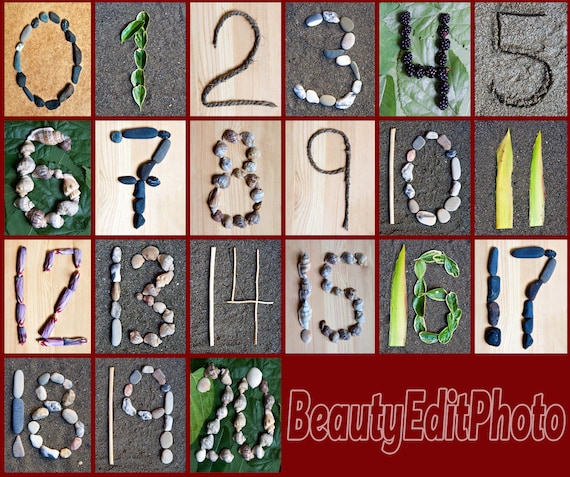 Nature numbers Farmhouse classroom decor Alphabet summer Classroom numbers Alphabet nursery art Alphabet download Nature alphabet