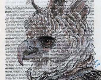 Harpy Eagle Portrait on Dictionary Paper- Wildlife Animal Art Print