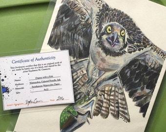 Águila con un pescado rapaz - impresión del arte y dibujo Original