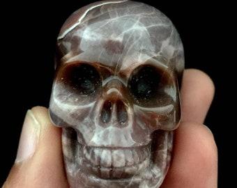 Petrified wood skull Item 1243