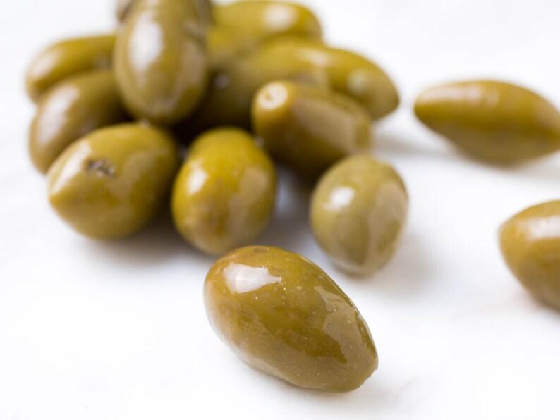 Picholine French Green Olea Europaea Olive Seeds 5 PCS RARE! ***Free  Shipping!***