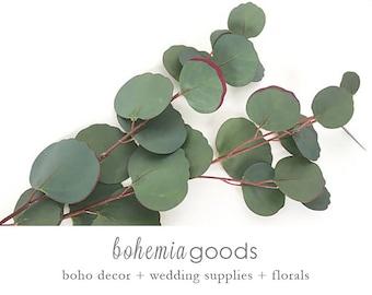 Eucalyptus, Silver Dollar Eucalyptus Stem, Faux Eucalyptus, Eucalyptus Stem, Eucalyptus arrangement, Eucalyptus Wedding, Floral Supply