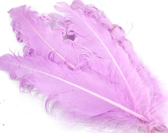 Purple Curled Goose Feathers. (5) Lilac Colored Bird Quills with Coiled Edges.