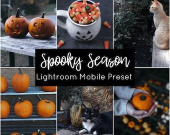 Spooky Season // Lightroom Mobile Preset