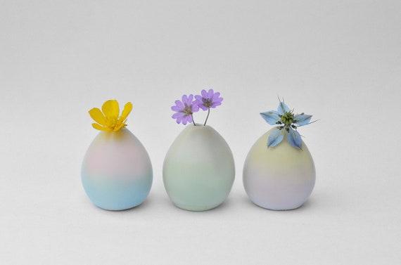 3 vases colorés - édition limitée