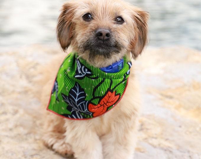 African Dog Bandana, Bandana for Dogs, Green Bandana, Orange Bandana