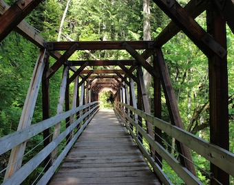 Framed walking bridge, wooden bridge, fine art photo, color photography, green trees, forest photo, many trees, trail path, forest, hiking