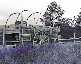 Old Wagon photograph, fine art photography, wagon wheels, landscape photography, black and white photo, whimsy photo, photography print