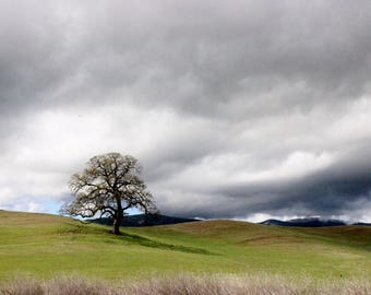 Wall art, hillside, cloudy sky, grass, hills, photography, picture, color, print, fine art, country side, landscape photography, photo