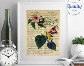 Yellow Warbler - J.J. Audubon, 145 years old Vintage book page print, dictionary print, encyclopedia print, antique book page print
