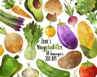 Watercolor Vegetables Clipart - Healthy Food Download - Instant Download - Corn - Broccoli - Eggplant - Avocado - Tomato - Potato