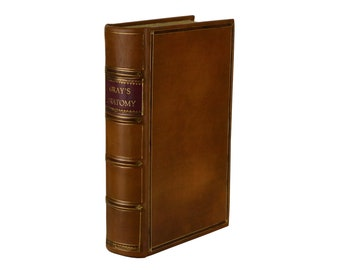 Antique Anatomy Book Etsy