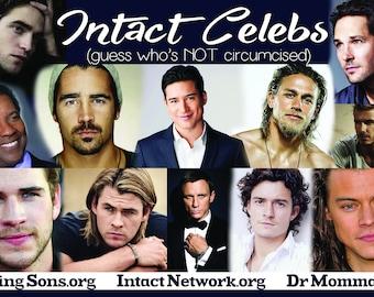 Intact Celebrities Oversized Cards