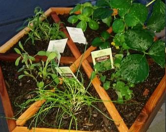 Handmade Cedar Herb Planter / Gift for Gardener / Made in Canada / Gift for Her / Gift for Him / Housewarming Gift / Mother's Day Gift