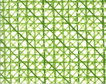Solana - Criss Cross - Cream - 48685 11 - Moda - Fabric - Sold by the Half Yard