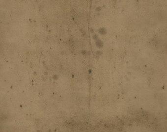 Tim Holtz - Provisions - Mocha - PWTH115.8MOCH - Fabric - Sold by the Half Yard & Fat Quarter