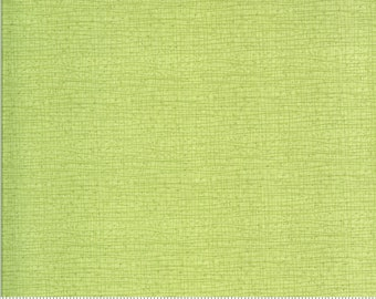 Solana - Thatched - Meadow - 48626 134 - Moda - Fabric - BTY, HY & FQ